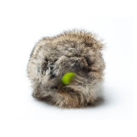 Kaninchenfell Cover mit Tennisball